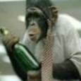 Leonard the Monkey picture